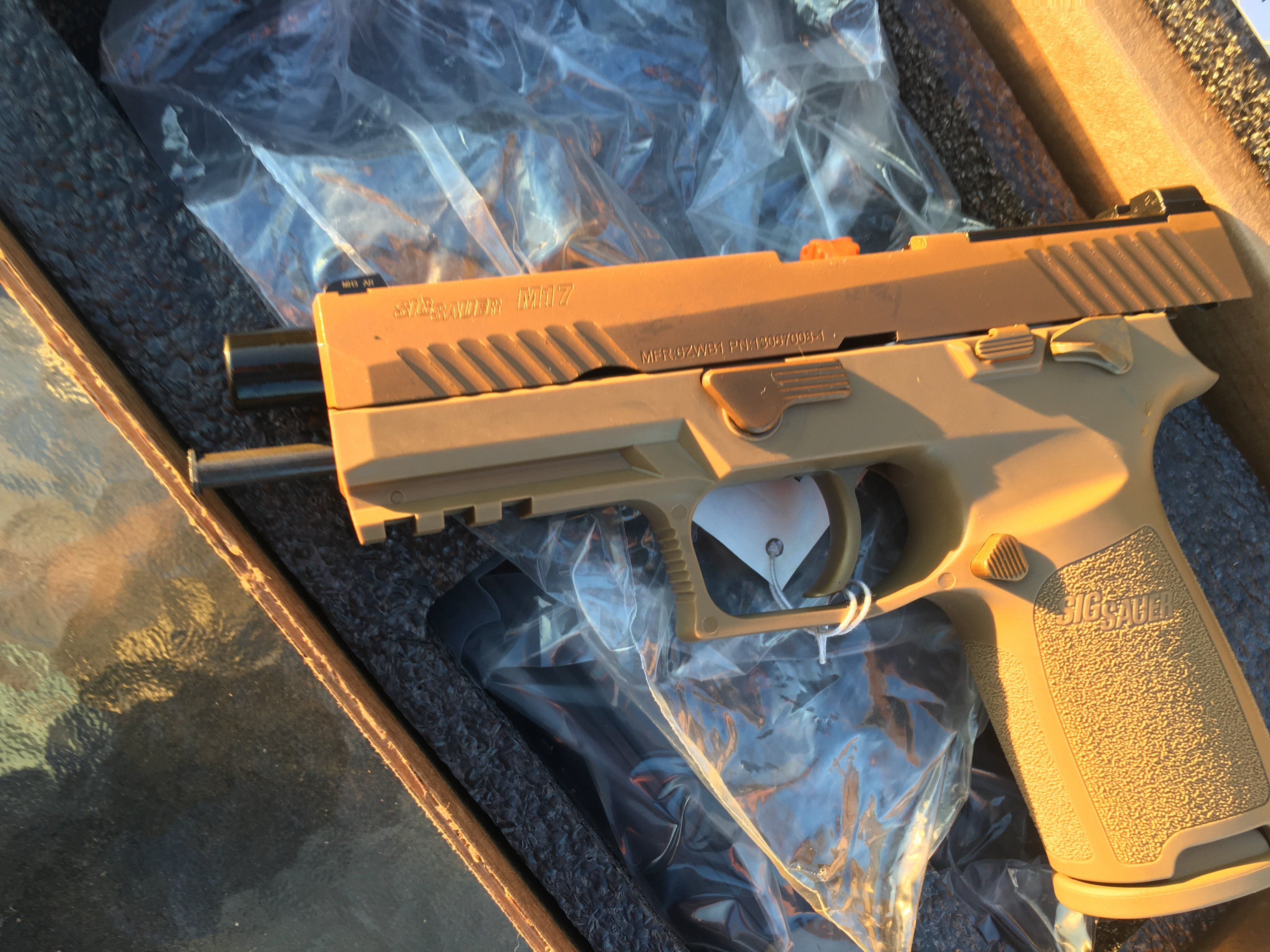 Well I bought an M17 Commemorative  - 1911Forum