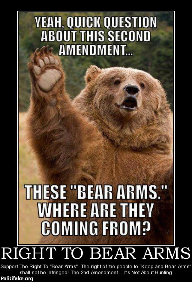 Click image for larger version  Name:right-bear-arms-vik-battaile-politics-1353720619.jpg Views:69 Size:173.2 KB ID:576940